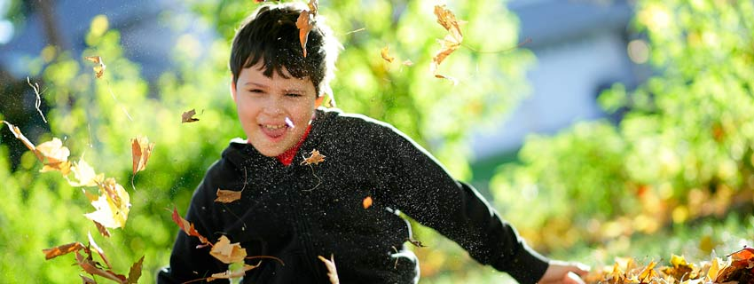 Boy in leaves large